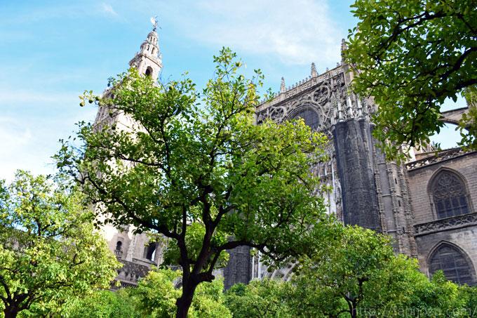 SPAIN3_DSC_0770